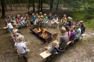 schoolreisje boomkroonpad staatsbosbeheer