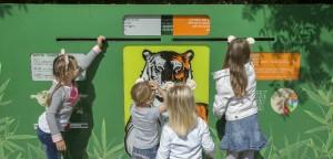 schoolreisje zooparc overloon